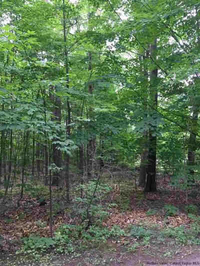 Saugerties Residential Lots & Land For Sale: 109 Glenerie Lane