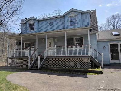 Wallkill Single Family Home For Sale: 148 Lewis Lane
