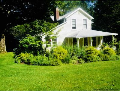 Saugerties Single Family Home For Sale: 326 Ralph Vedder