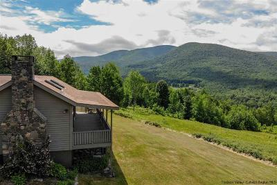 Greene County Single Family Home For Sale: 222 Rusk Mountain Road