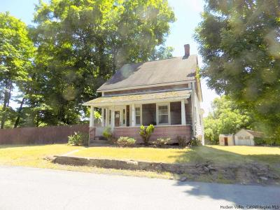 Plattekill NY Single Family Home For Sale: $69,000