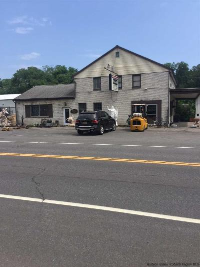 Saugerties Commercial For Sale: 2910 Route 9w Route