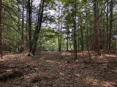Saugerties Residential Lots & Land For Sale: Evergreen Drive