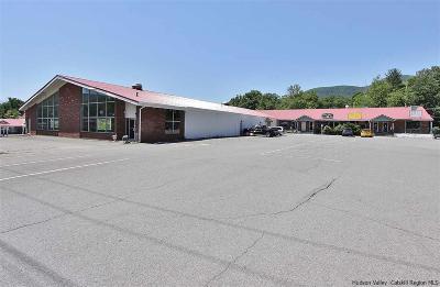 Boiceville Commercial For Sale: 4115-4125 Route 28