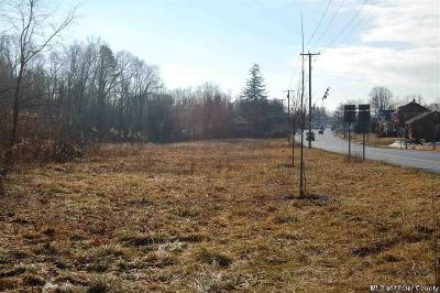 Saugerties Commercial Lots & Land For Sale: Route 9w
