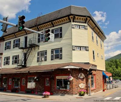 Delaware County Commercial For Sale: 798 Main Street