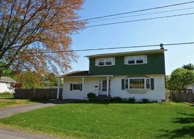 Saugerties Single Family Home For Sale: 12 Highland Avenue