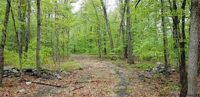 Pine Bush NY Residential Lots & Land For Sale: $95,000