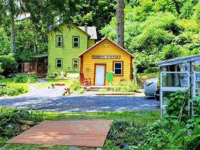 Shandaken Single Family Home For Sale: 7172 State Route 28