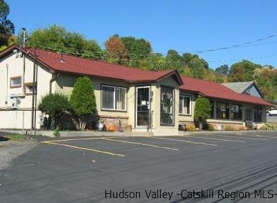 Commercial For Sale: 1441 Route 9w