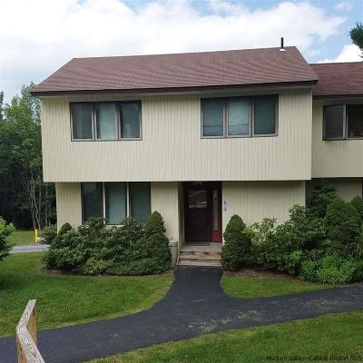 Delaware County Townhouse For Sale: 130 Pines Drive