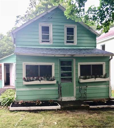 Greene County Single Family Home For Sale: 51 Pine Avenue