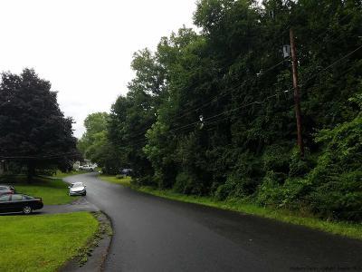 Rosendale Residential Lots & Land For Sale: Cedar Street