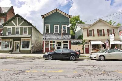 Greene County Commercial For Sale: 26 W Bridge Street