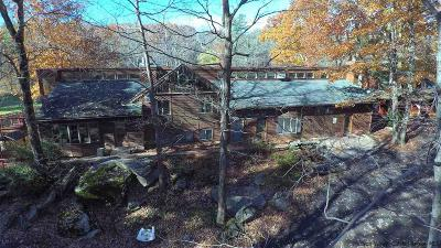 Catskill Single Family Home For Sale: 1474 High Falls Road