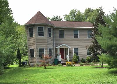 Esopus Single Family Home For Sale: 145 Black Creek Road