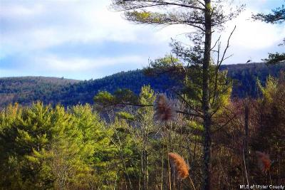 Ulster County Residential Lots & Land For Sale: Tbd Harmati Lane