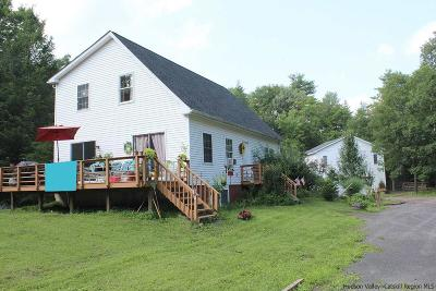 Ulster County Single Family Home For Sale: 99 Goat Hill