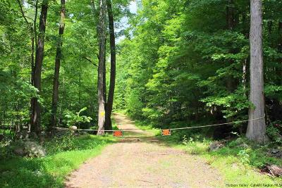 Ulster County Residential Lots & Land For Sale: 1134 Old Post Road