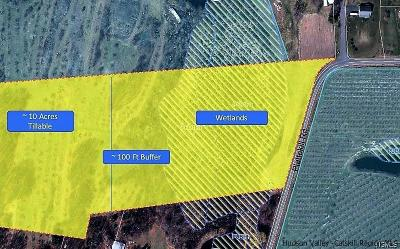 Ulster County Residential Lots & Land For Sale: Plattekill Road