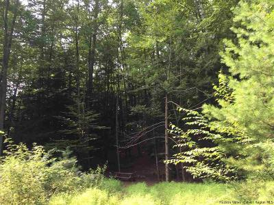 Ulster County Residential Lots & Land For Sale: Winne Road