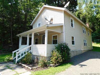 Napanoch Single Family Home For Sale: 74 Rt 55