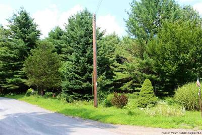Ulster County Residential Lots & Land For Sale: Etheline Road