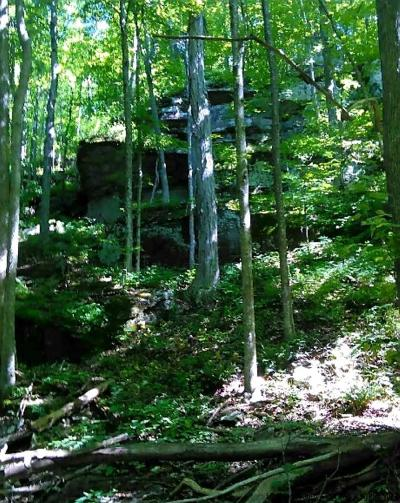 Ulster County Residential Lots & Land For Sale: State Route 28 Roads