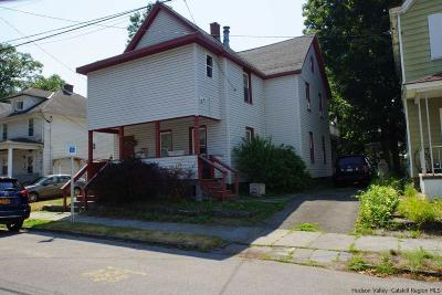Ulster County Multi Family Home For Sale: 73 Brewster Street