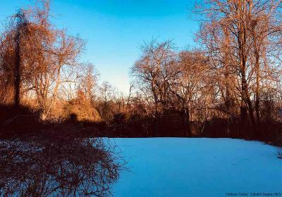 Ulster County Residential Lots & Land For Sale: 401-411 Pearl Street