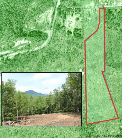 Ulster County Residential Lots & Land For Sale: 465 Sickler Road