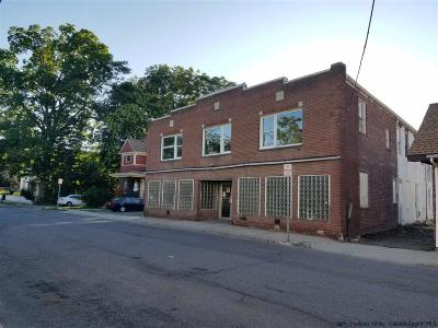 Ulster County Commercial For Sale: 23 Market St