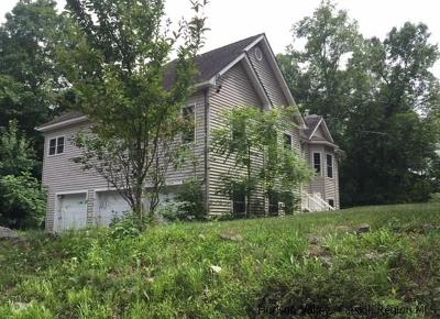 Single Family Home For Sale: 389 Dewitt Mills Road