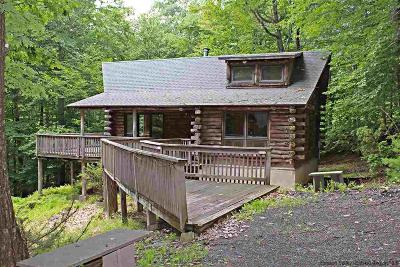 Ulster County Single Family Home For Sale: 92 Four Wheel Drive