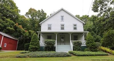 Ulster County Single Family Home For Sale: 425 Crescent Ave