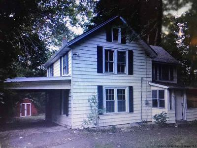 Ulster County Single Family Home For Sale: 506 Cedar Street