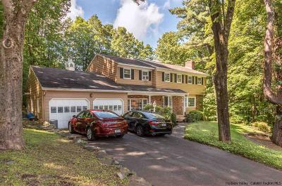 Ulster County Single Family Home For Sale: 147 Flower Hill