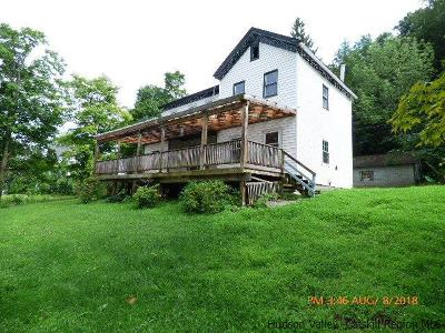 Delaware County Single Family Home For Sale: 42040 Route 28