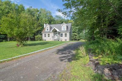 Ulster County Single Family Home For Sale: 49 Baker Road