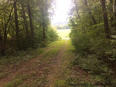 Stone Ridge Residential Lots & Land For Sale: Route 209