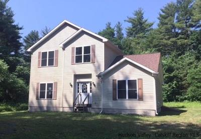Ulster County Single Family Home For Sale: 22 Valk Road