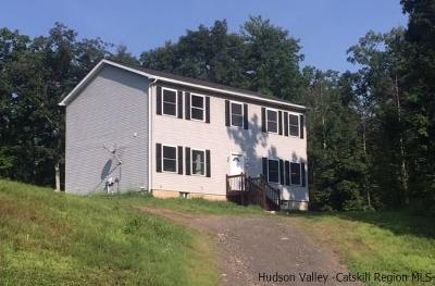 Saugerties Single Family Home Accepted Offer Cts: 49 Gils Way