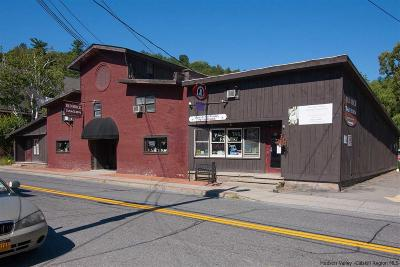 Commercial For Sale: 388 Main St