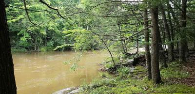 Greene County Residential Lots & Land For Sale: Mossy Hill Rd
