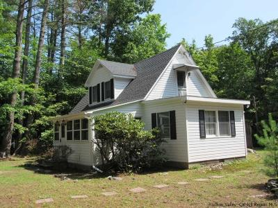 Saugerties Single Family Home For Sale: 376 Band Camp Road