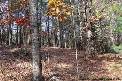 Orange County, Sullivan County, Ulster County Residential Lots & Land For Sale: 46 Pine Grove Road