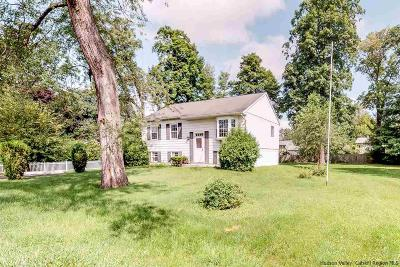 Saugerties Single Family Home Accepted Offer Cts: 8 Roming Lane