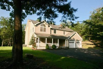 Ulster County Single Family Home For Sale: 47 Cranberry