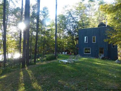 Ulster County Single Family Home For Sale: 15 Lakeview Drive