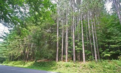 Delaware County Residential Lots & Land For Sale: Margaretville Mountain Road